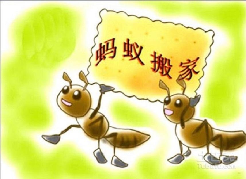 正规蚂蚁搬家物流公司